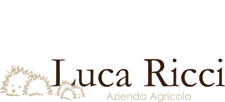 Luca Ricci